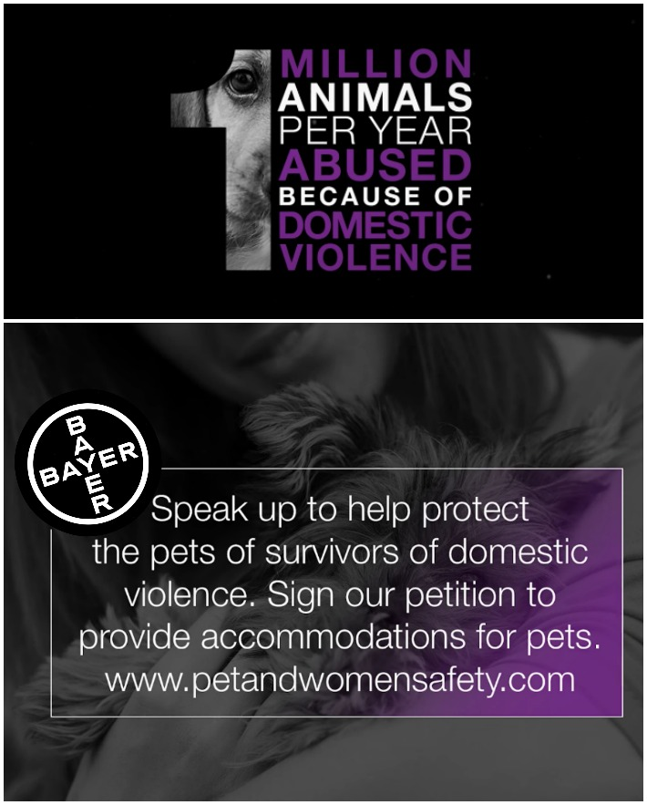 Bayer PAWS Act - Domestic Violence and Their Pets