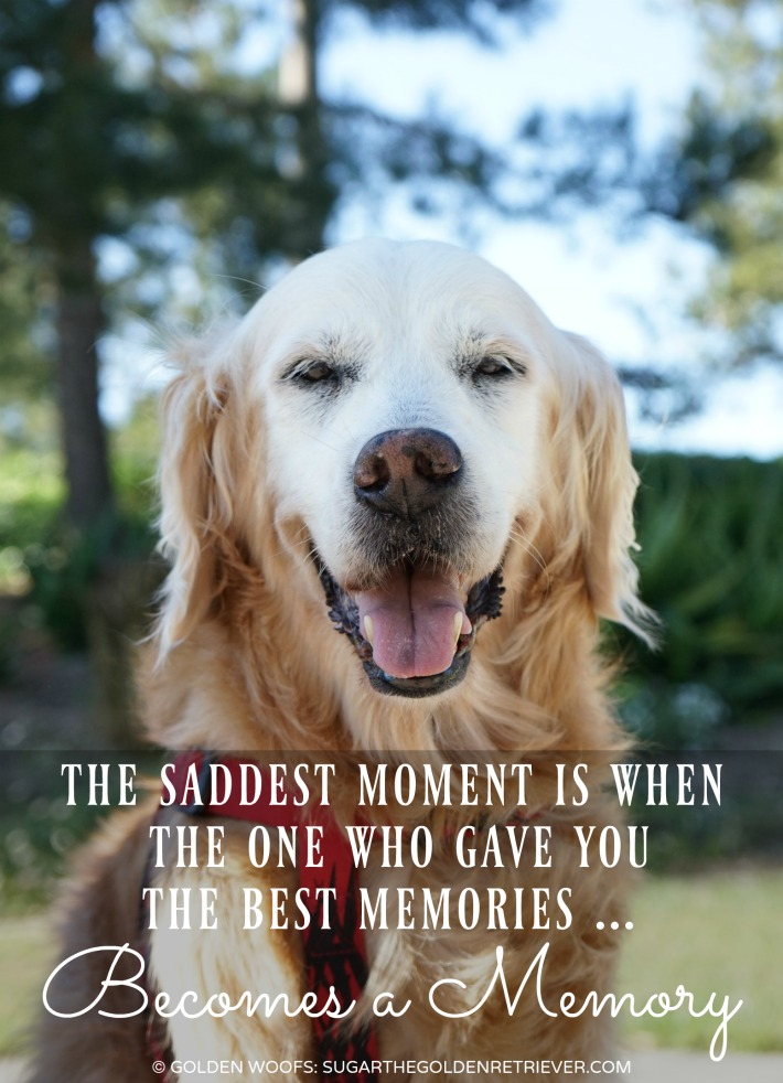 quote: the saddest moment when the one who game you the best memories become a memory