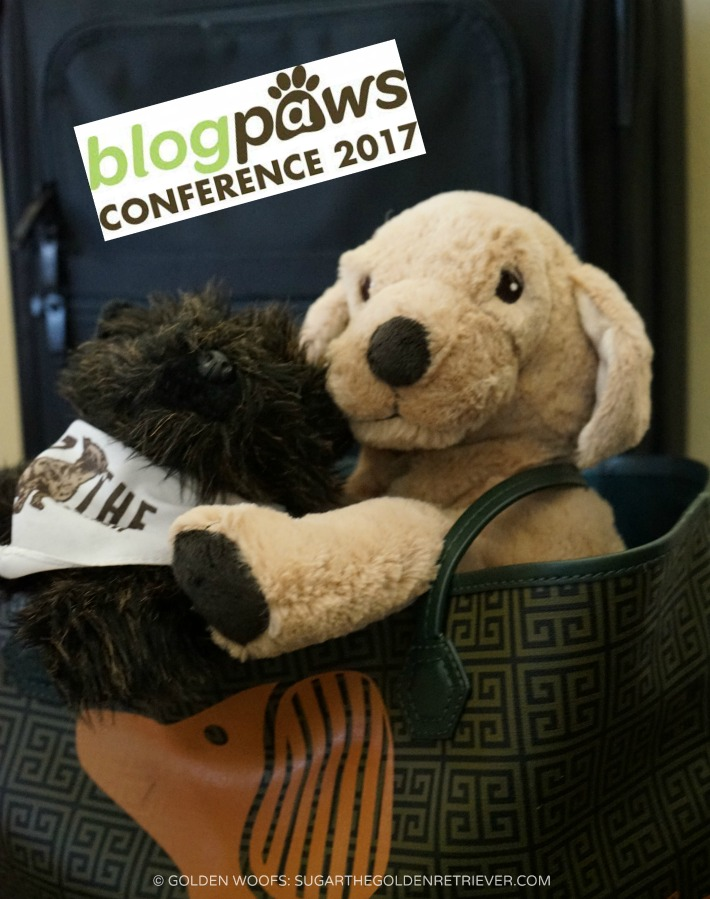 BlogPaws 2017 Conference: Goldie & Little OZ