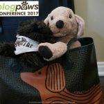 Going to #BlogPaws with Goldie and Little OZ