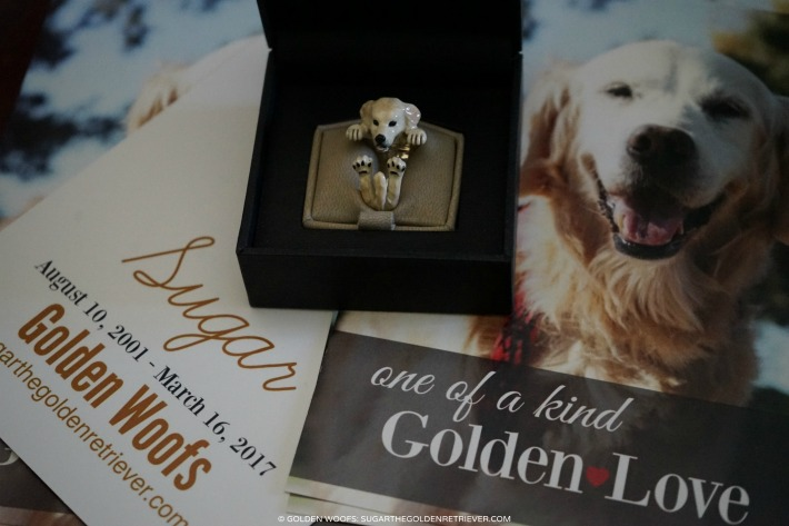 Hug Ring Golden Retriever