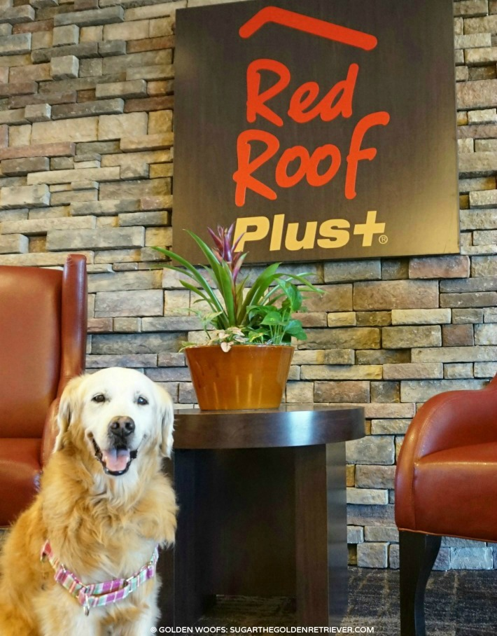 Pet friendly Red Roof Plus