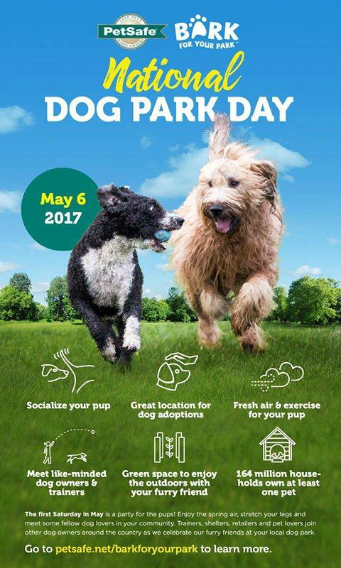 PetSafe National Dog Park Day Infographic