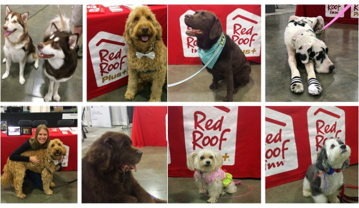 At 2017 #BlogPaws Conference Red Roof Loves Pets #RedRoofLuvsPets
