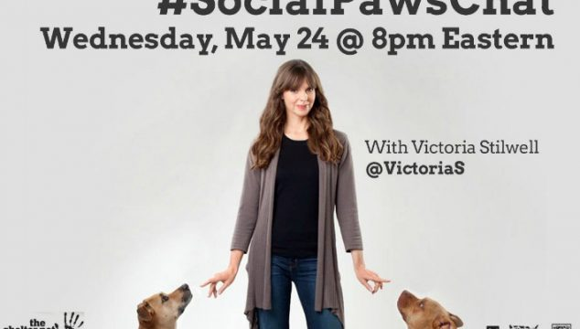 Join #SocialPawsChat with Victoria Stillwell