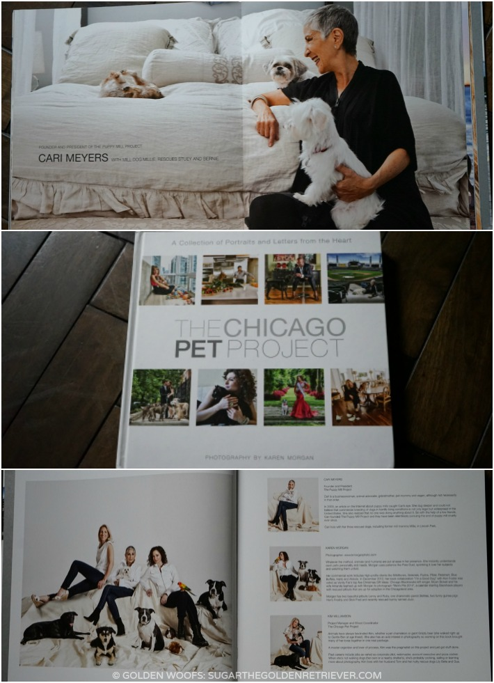 The Chicago Pet Project: Portraits and Letters from the Heart