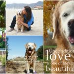 5 Reasons: It's Awesome to be a Dog Mom