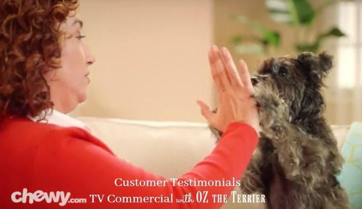 Have You Seen Chewy.com TV Commercial? #ChewyInfluencer