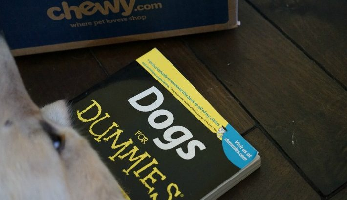 Dog Owner's Reference Book: Dogs for Dummies #ChewyInfluencer