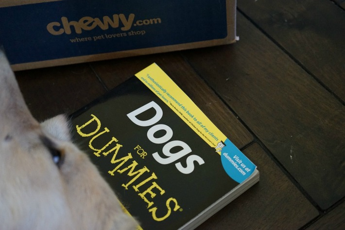 dog for dummies dog owner's reference book