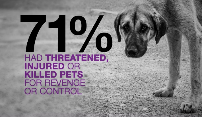 Bayer PAWS Act domestic violence and their pets