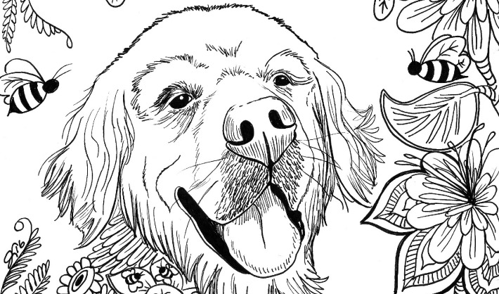 Sugar S Bee Utiful Summer Coloring Page Golden Woofs