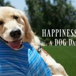 Happiness Is ... A Dog Dad Hug
