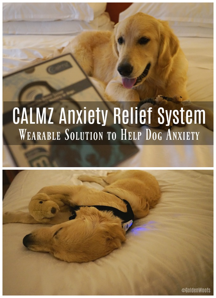 CALMZ Anxiety Relief System for Dog Anxiety