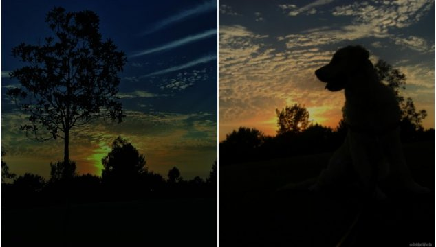{This Moment} See Beautiful: Sunsets