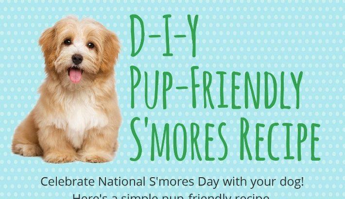 DIY Dog Safe S'mores Recipe