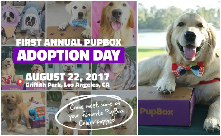 PupBox Adoption Day