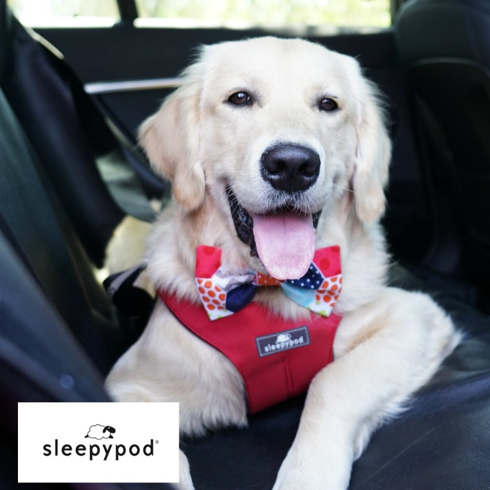 Sleepypod Safest Dog Travel Harness