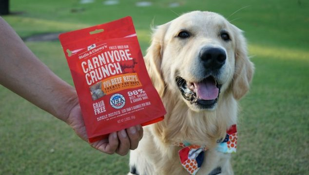 Stella & Chewy's Carnivore Crunch Dog Treats #ChewyInfluencer
