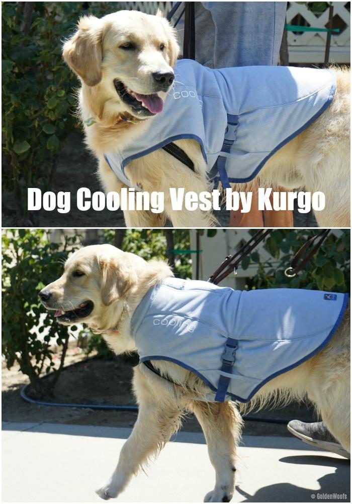 Dog Cooling Vest by Kurgo