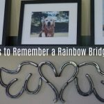 8 Gifts to Remember a Rainbow Bridge Dog