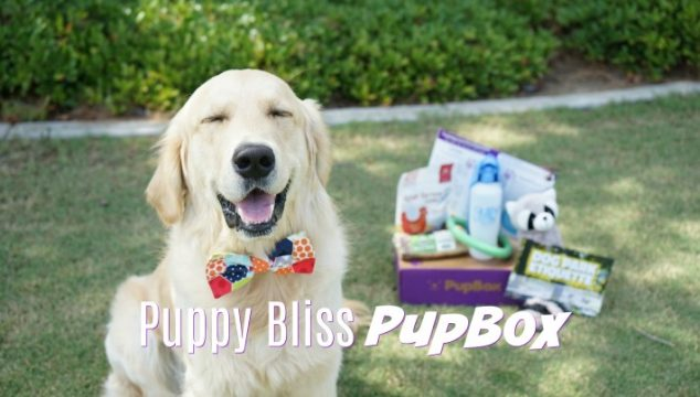 Puppy Bliss PupBox | Subscription Box for Puppies