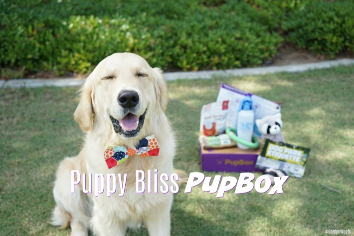 Puppy Bliss PupBox
