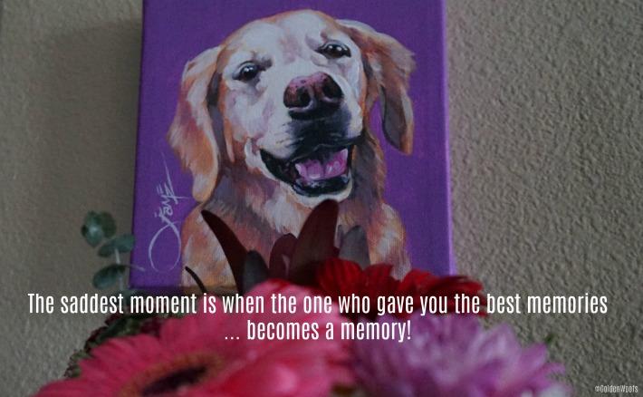 SUGAR National Pet Memorial Day