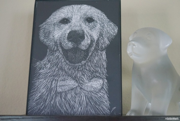 Scratchboard Pet Portrait by Unsketch