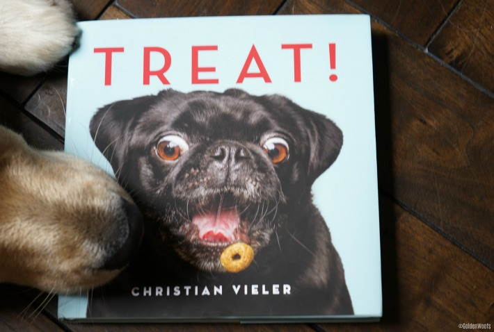 TREATS! Book Review Christian Vieler