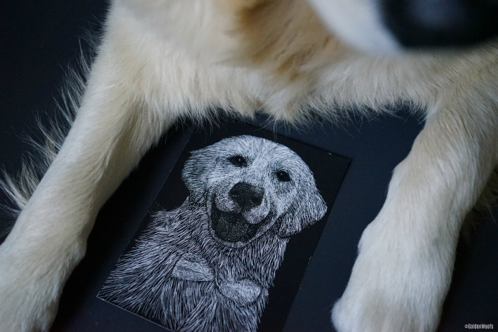 Unique Scratchboard Pet Portrait