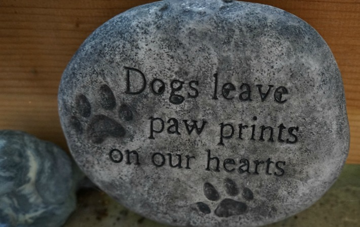 dogs leave paw prints on our heart