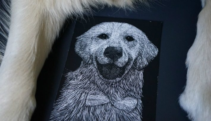 Unique Scratchboard Pet Portrait by Unsketch