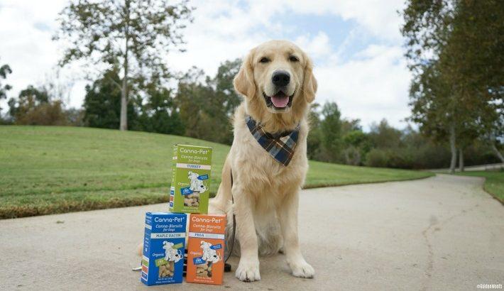 Canna-Pet CBD for Dogs