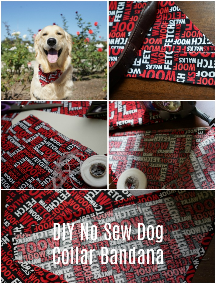 DIY No Sew Dog Collar Bandana
