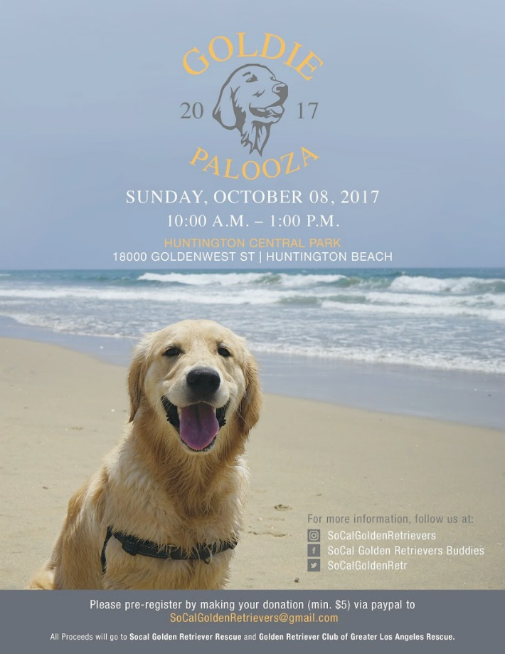 Pawmazing Golden Day Goldie Palooza 2017 Golden Woofs