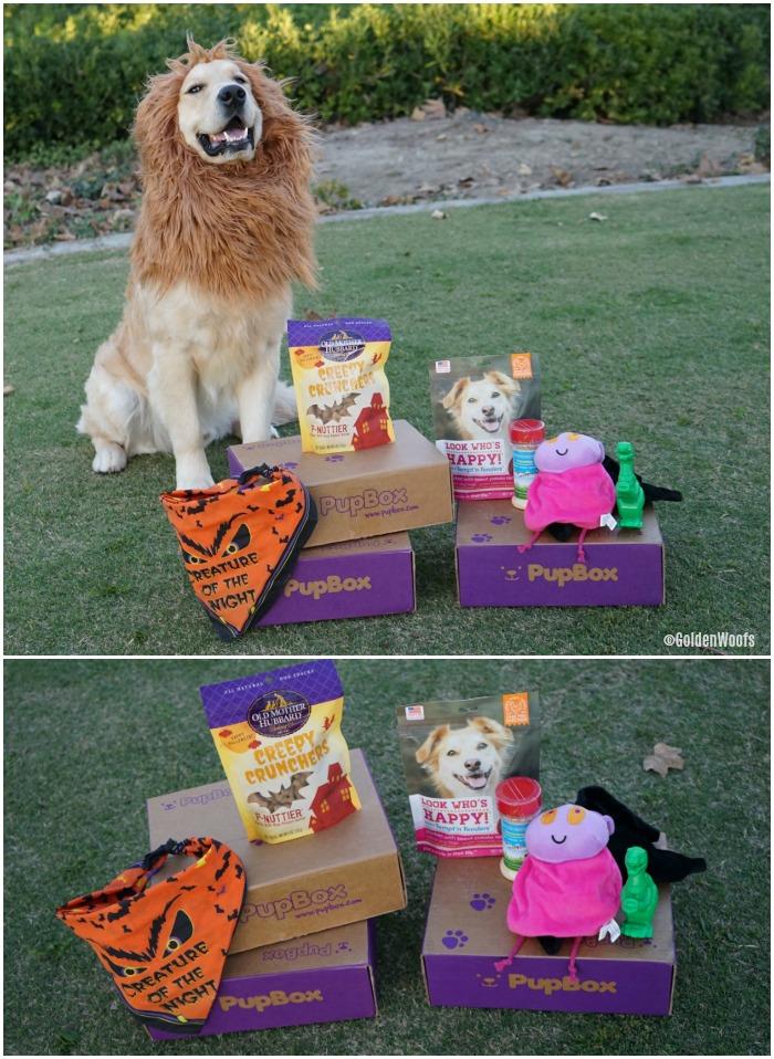 Halloween October PupBox