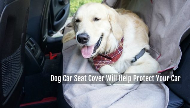 Dog Car Seat Cover Will Help Protect Your Car #ChewyInfluencer