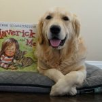 Maverick and Me | Teaching Kids About Pet Adoption