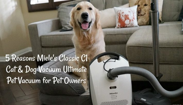 5 Reasons Miele's Classic C1 Cat & Dog Vacuum – Ultimate Pet Vacuum for Pet Owners