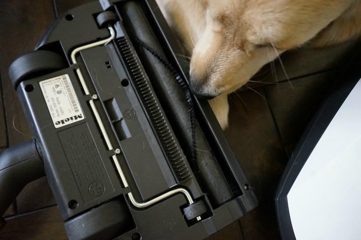 Miele Classic C1 Cat & Dog Vacuum Floorheads