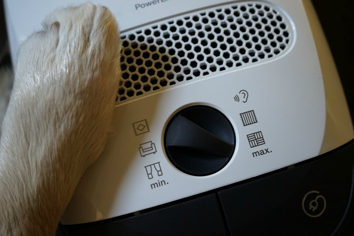 Miele Classic C1 Cat & Dog Vacuum Rotary Dial