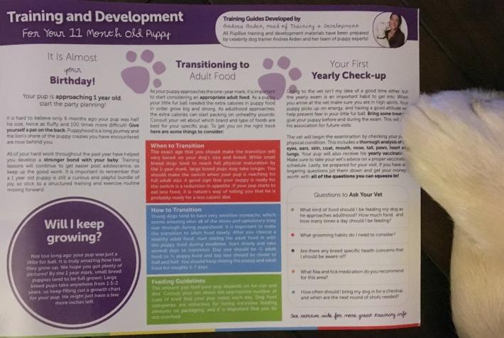 PupBox PupBox Training Development Tips