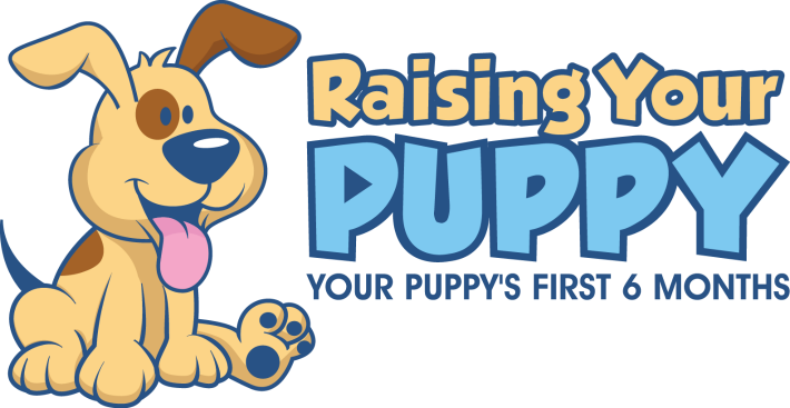 Raising Your Puppy Robin Bennette