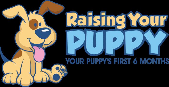 Raising Your Puppy Robin Bennette
