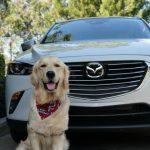 Weekend Fun Riding 2018 Mazda CX-3 #DriveMazda