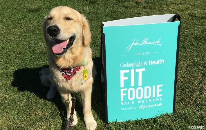 cooking light & health fit foodie run
