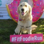 Will Run For Food #MostDeliciousRun Dog Friendly #FitFoodieRun
