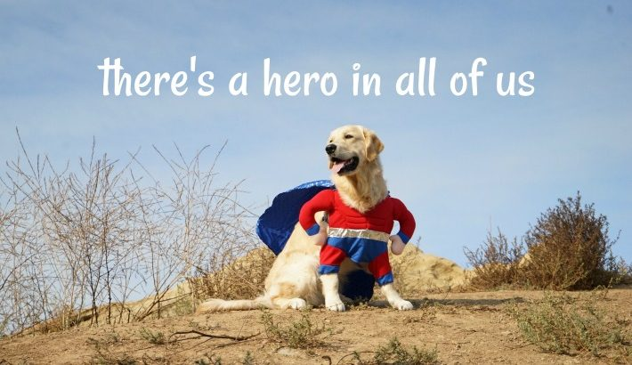 Super Hero Dog | There's A Hero In All Of Us