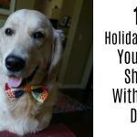 10 Holiday Foods You Can Share With Your Dog